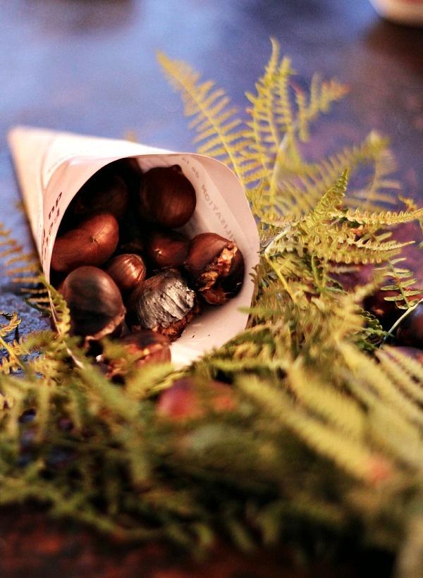 Quelle est la différences entre Châtaignes et Marrons ?   et bien j'apprendrais que Marron est le nom ancien qui est resté dans le langage mais qu'il s'agit bien de châtaignes que l'on consomme , les marrons sont des châtaignes non cloisonnés , à ne pas confondre avec    le fruit du Marron d'Inde que l'on retrouve souvent dans les cours d'école est qui est  toxique et donc non comestible !
