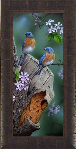 Springtime Blues by Jerry Gadamus 14.5x28.5 Bluebirds Blue Birds Wildlife Framed Art Print Wall Décor Picture Signed and Numbered by Home Cabin Décor, http://www.amazon.com/dp/B00719TBBW/ref=cm_sw_r_pi_dp_IlOUqb18F7KRJ