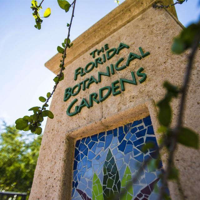 b49c1084ef4b44a1e2b1477a01ea2317 - The Florida Botanical Gardens In Largo
