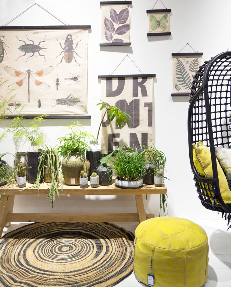 Urban Jungle Bloggers: Plant Trends from Maison & Objet 2016 in Paris