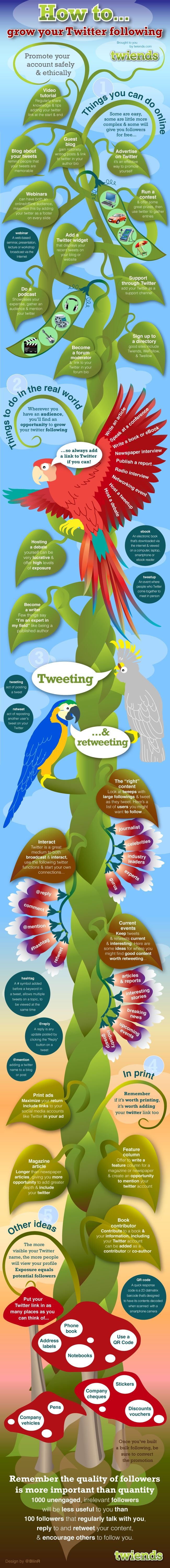 Pretty tropical infographic on gaining twitter followers. Read it for the parrots!