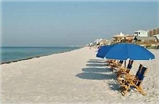 Pet Friendly Beach Front Rentals Cedar Key