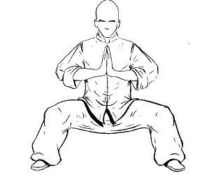 Drawing of the 'Horse Stance' position, try for 5 minutes per day up to 30 minutes. Breath in through the nose, with the tongue on the roof of the mouth breath out slowly, continue breathing in and out while in the horse stance position. It looks simple, but you have to build the time up slowly 5 minutes the first week 10 minutes the second week and so on. There are more exercises for the upper body in this position.( A Shaolin exercise )