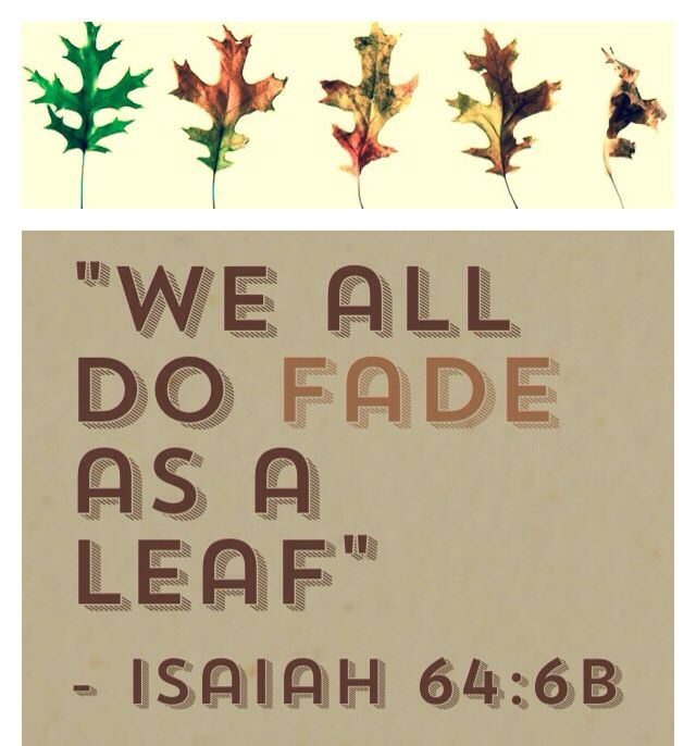 Phillippians 4 6 7 Cast Your Cares Upon The: 40 Best Isaiah Images On Pinterest