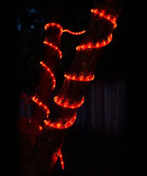 This Red 33' Rope Light by Asian Import Store is perfect! #zulilyfinds