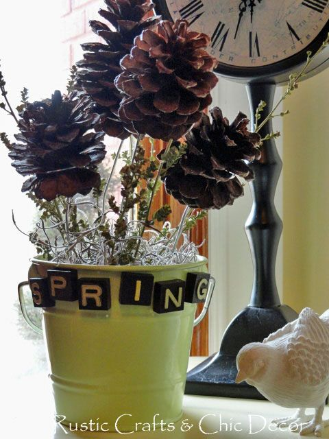 Best images about diy pinecone decor on pinterest