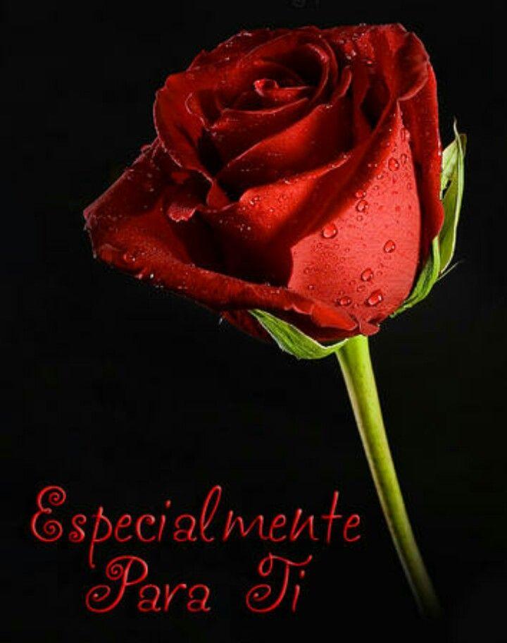 Especialmente Para Ti!!! | Amistad | Pinterest