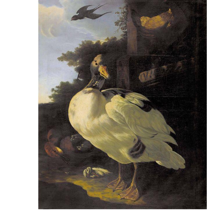 hondecoeter melchior de utrecht 1636 1695 amsterdam umkreis enten huhn und schwalbe vor. Black Bedroom Furniture Sets. Home Design Ideas