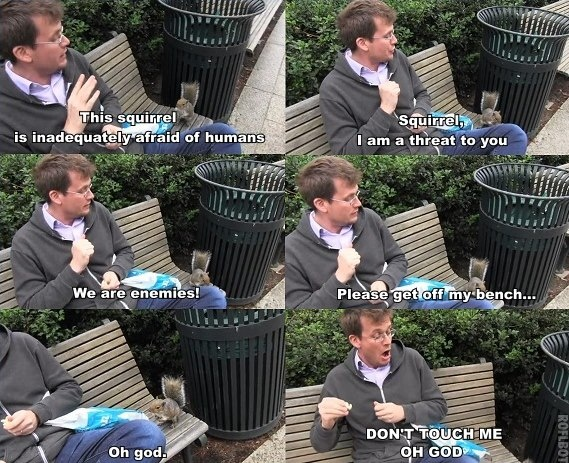 John Green :) OMG, this totally reminds me of when I was attacked by a squirrel on campus in college. Little bastard tried to sandwich-jack me!