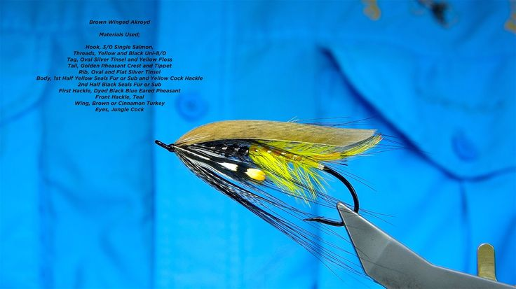 Tying the Brown Winged Akroyd Salmon Fly with Davie McPhail