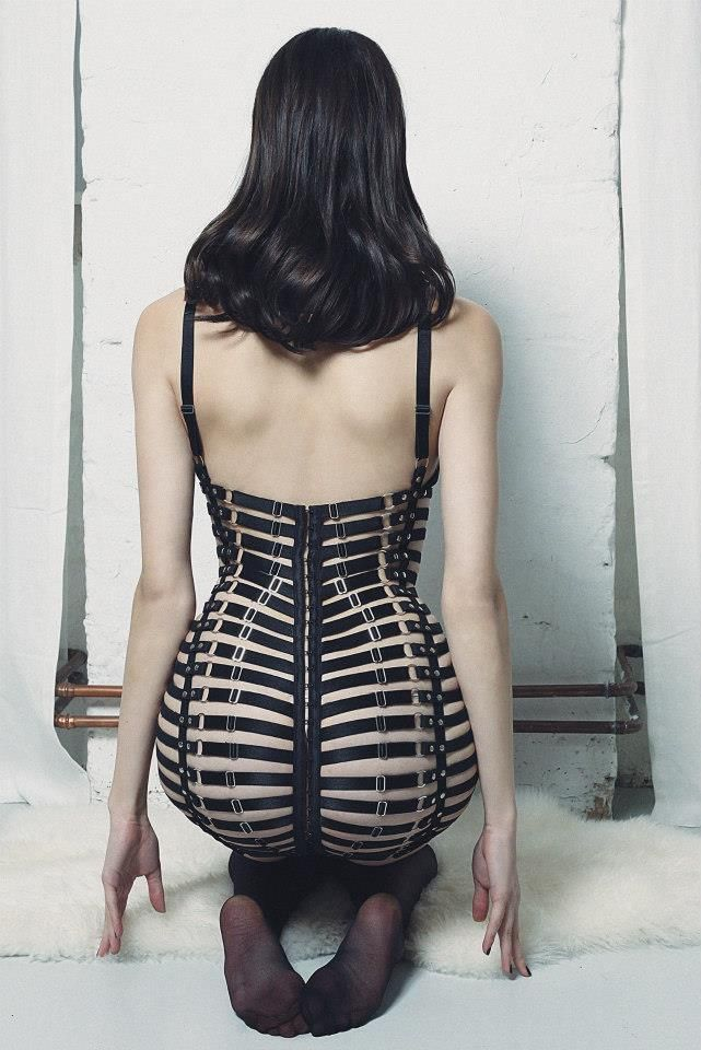 Mania Lingerie Aura Leather Frame Dress - so, so, so amazing!