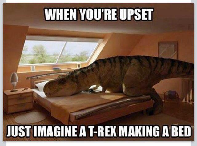 Best TRex Images On Pinterest Cool Stuff Cricut Explore And - T rex bed