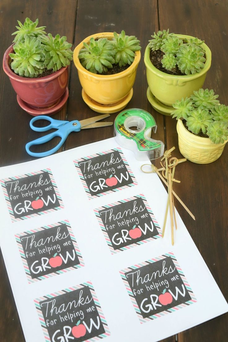 """A succulent plant with a printable label, """"Thanks for helping me grow."""""""