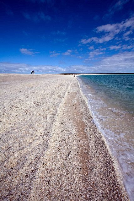Shell Beach – Beautiful and Unique Beach With Shells Instead of Sand