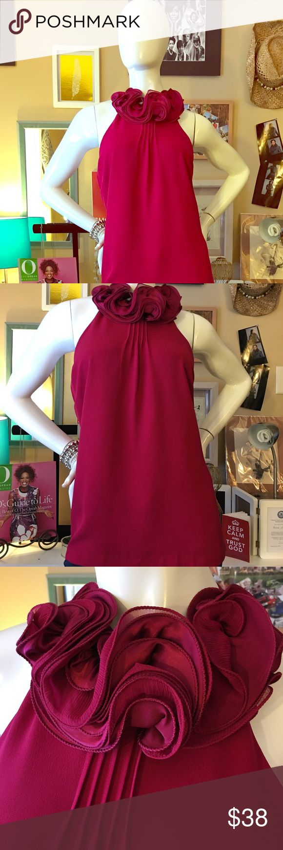 Hot Pink top. Beautiful hot pink top dress up or down. Ann Taylor Tops Blouses