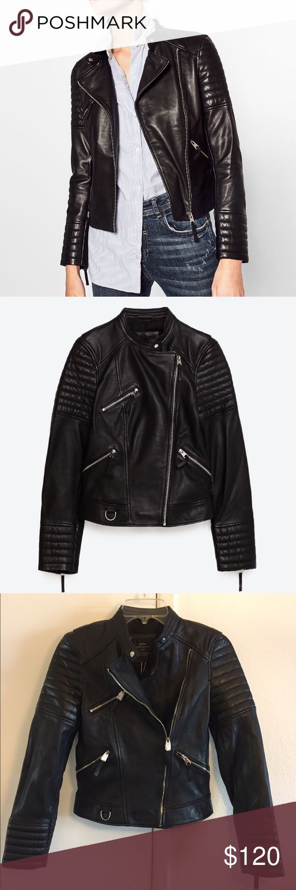 Zara TRF Collection Real Leather Jacket TRF Real Leather Jacket With Zips Zara Jackets & Coats