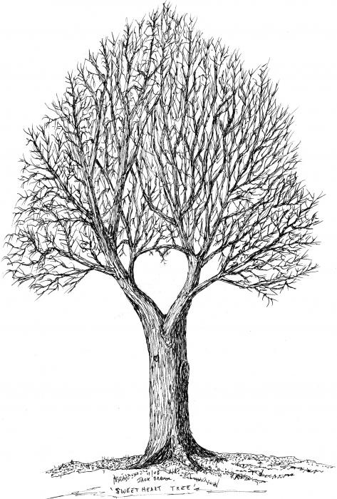 70 best images about tattoo ideas on pinterest trees for Best tree drawing