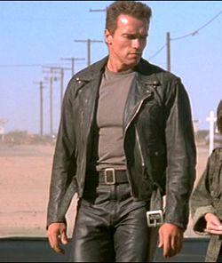 Terminator 2: Judgment Day (1991): Arnold Schwarzenegger ...