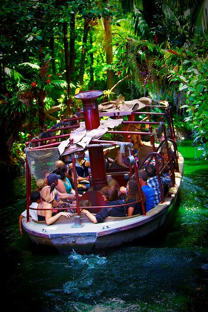 Jungle Cruise Look  the back side of the falls??lol
