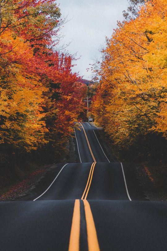 Landscape & Nature   Fall drive .