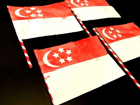 Singapore National Day art n craft activity for kids - paper flags
