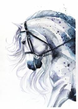 Портрет лошади - Karolina Kijak
