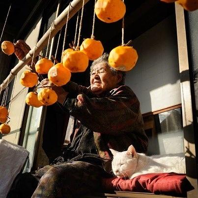 Miyoko Ihara has been taking photographs of her grandmother, Misao and her beloved cat Fukumaru since their relationship began in 2003. Their closeness has been captured through a series of lovely photographs. 12-21-12 / Miyoko Ihara