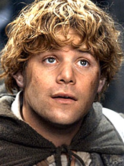 Sam, Frodo's best friend and companion... And probably the most brave with the biggest heart of all..