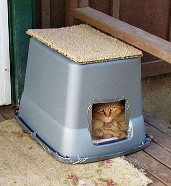 Bouw Een Warm Winterpaleis Voor Je Buitenkat Radio 2 De Grootste Familie Outdoor Cat Shelter Cat Shelter Outdoor Cats