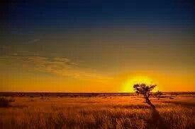 Sunset. ...