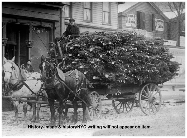 Christmas OLD 1900'S WAGON DELIVERING CHRISTMAS TREES