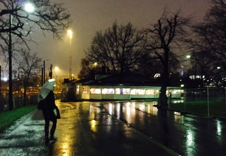 Kaisaniemi, Helsinki, December 2017
