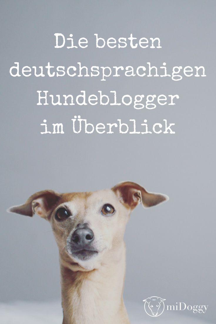 Die besten deutschsprachigen Hundeblogger im Überblick