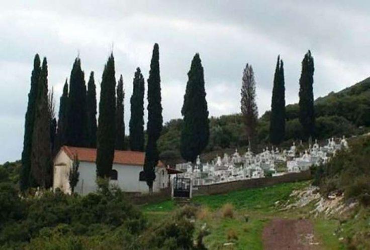Η ΜΟΝΑΞΙΑ ΤΗΣ ΑΛΗΘΕΙΑΣ: Για ποιο λόγο φυτεύουν κυπαρίσσια στα νεκροταφεία