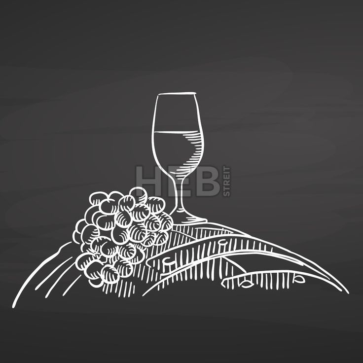 Wine glass and grapes on barrel. Chalk on chalkboard. Hand drawn healthy food sketch. Black and White Vector Drawing on Blackboard. ... ... by #Hebstreit  #stockimage #design #sketch #illustration