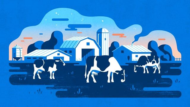 We're proud to share two deliciously milky spots for The Dairy Farmers of Canada. These charming spots  illustrate the positive effects of how the Canadian dairy sector trickle down to local communities. How very Canadian of us.  Directed by: BYB – Geoff & Darren Donovan Art Direction: Geoff Donovan Color Design: Geoff Donovan Storyboard: Simon Pauette Layout/Design: Geoff Donovan Character Design: Darren Donovan Character Posing: James Walsh, Darren Donovan Character Animation: Michelle…