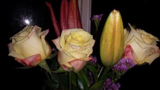 Bonnies roses