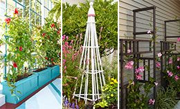 17 best images about garden trellis on pinterest for Free standing garden trellis designs