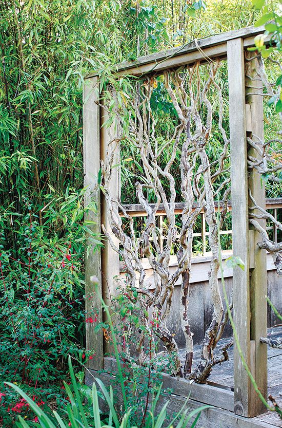 "Go natural ""Quirky panels built from fallen twisted willow branches imbue this garden with personality. Their organic forms and weathered patina meld beautifully with plants. Both see- and eye-catching, these panels screen, delineate and frame the garden ""rooms."""" - Canadian Gardening"