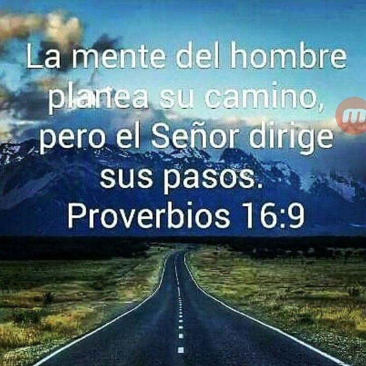 Proverbios 16:9 #Repost @ceci_velsa