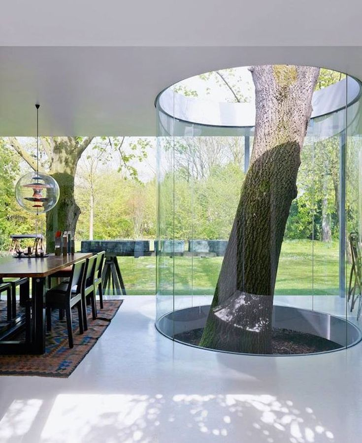 Tree Growing Inside The House Surrounded By A Glass Cylinder Home Trees  Modern Living Room Interior Design Interesting Home Ideas Modern Homes Tree  House ...