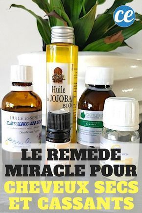 Cheveux Secs Et Cassants ? Le Remède Miracle Que Vos Cheveux Vont ADORER ! – Mag Fran