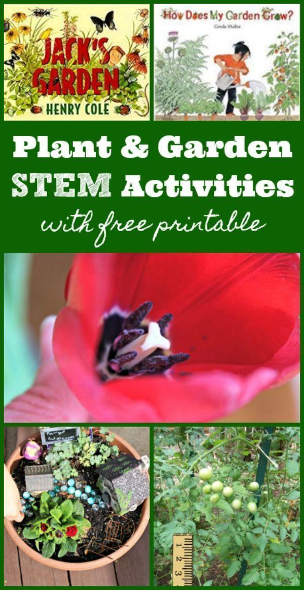 9 Plant & Garden STEM Activities