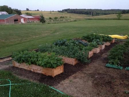 garden projects on pinterest gardens raised beds and raised bed