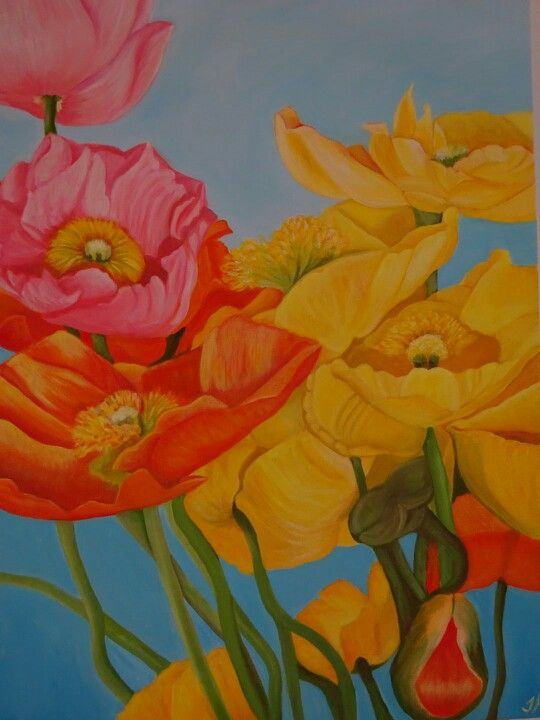 Poppies original oil painting by Tracey Hall