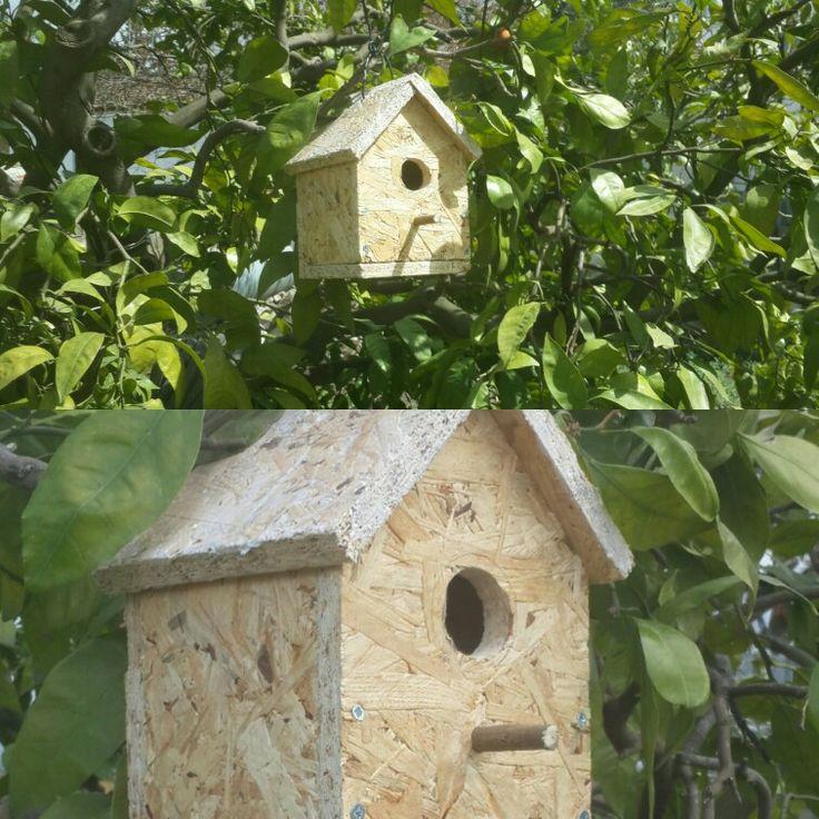 BIRD HOUSE - KUŞ EVİ   Kuş evi OSB malzemeden yapılmıştır, tamamı tahtadır. Planı ve tahtaların boyutları çizilip elektrikli testere yardımıyla eksildikten sonra vidalar ile birlestirilmistir. Küçuk kuşlar için idealdir.