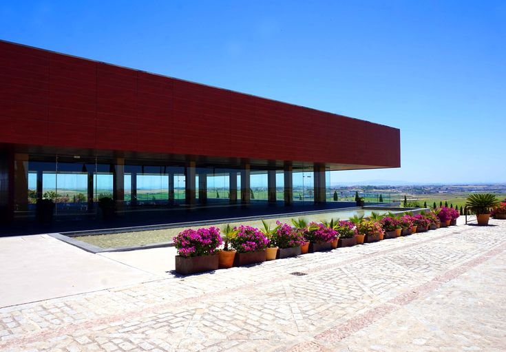 Spanish sun and a visit to Bodegas Luis Perez in Jerez de la Frontera – The Foodaholic