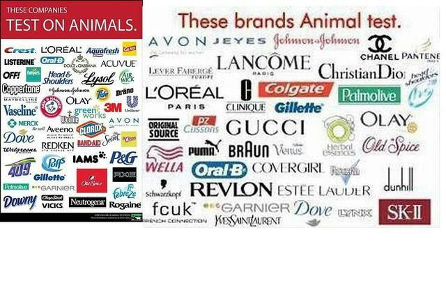 Cosmetic brands that dont test on animals 2017