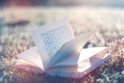 Los libros son abejas que transportan el polen de la sabiduría de una mente a otra.