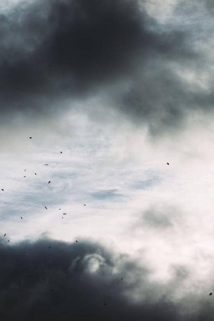 Ziemlich Blauer Himmel Lebenslauf Hilfe Galerie - Beispiel ...